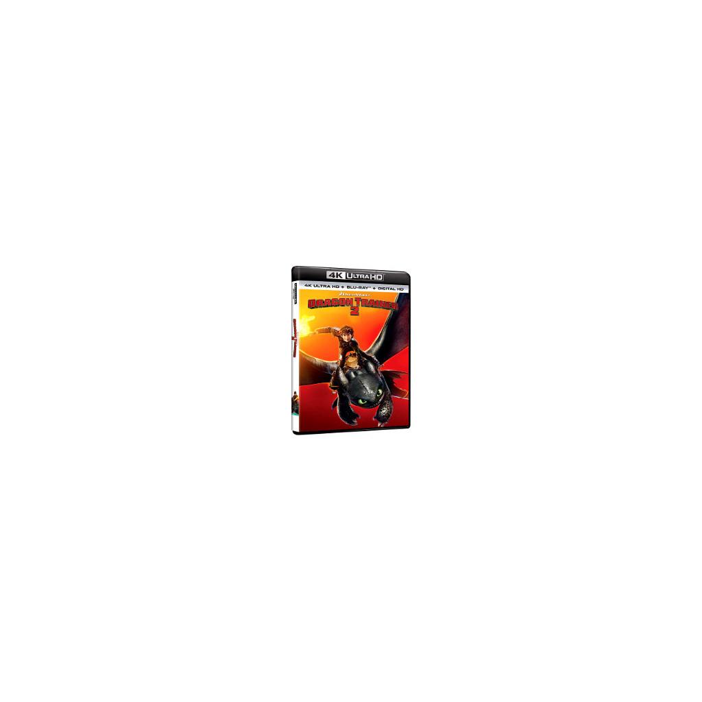 Dragon Trainer 2 (4K Ultra HD + Blu Ray)