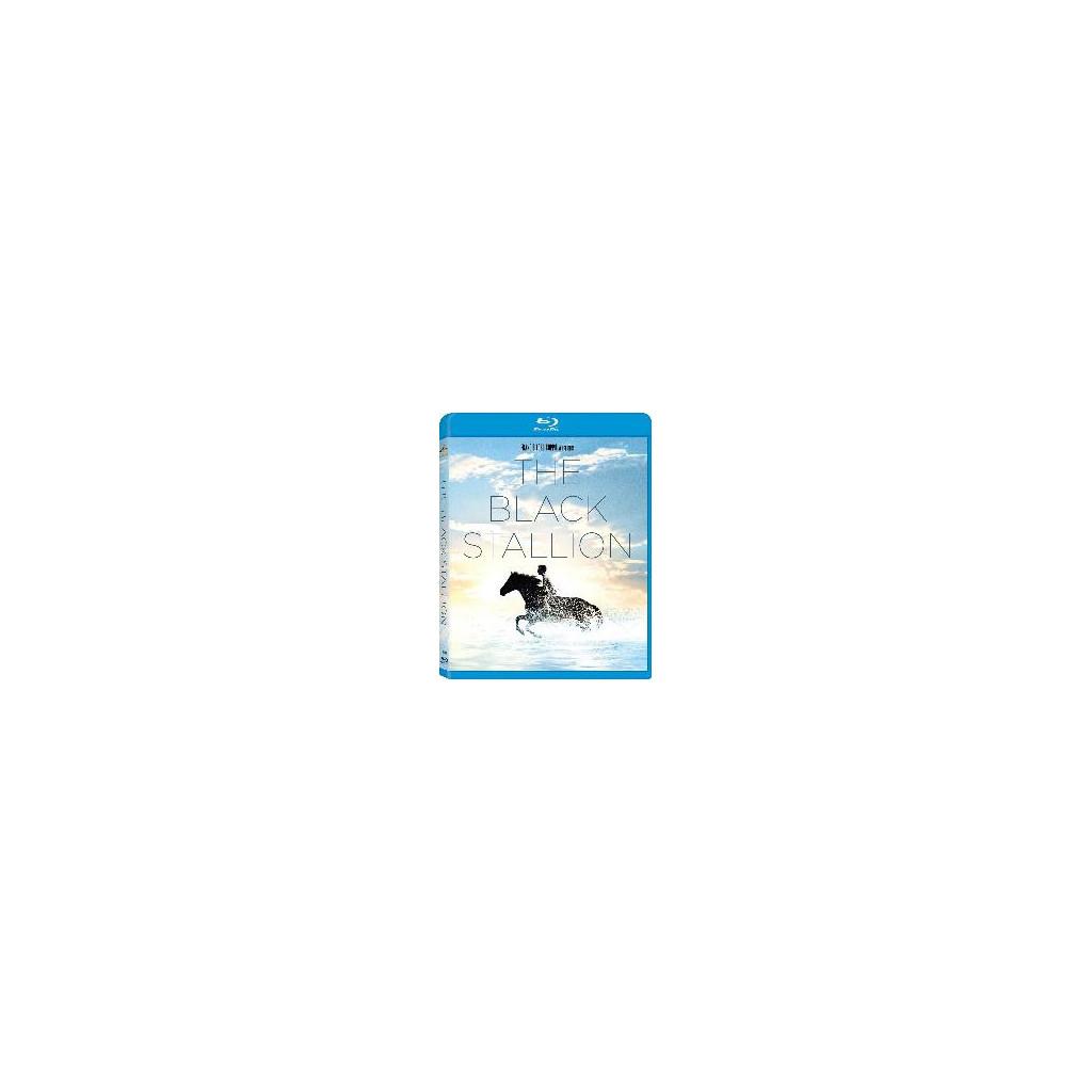 Black Stallion (Blu Ray)