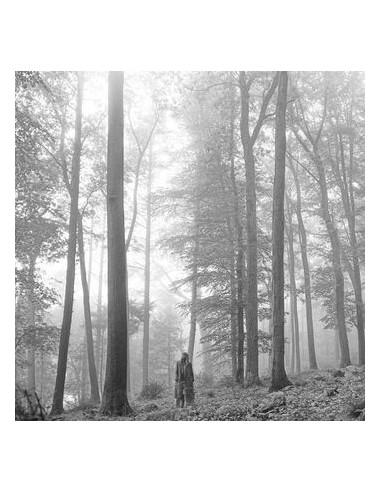 Swift Taylor - Folklore