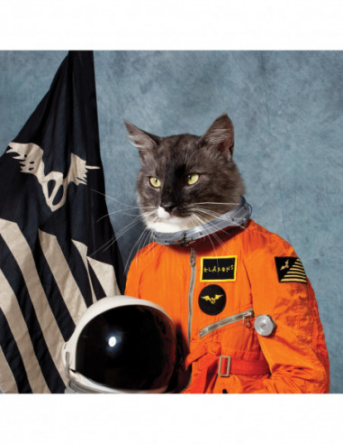 Klaxons The - Surfing The Void (Rsd)