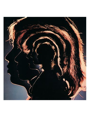 Rolling Stones The - Hot Rocks (Vinyl...