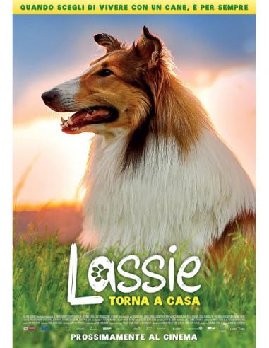 Lassie Torna A Casa (Blu-Ray)